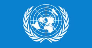 Organizzazione delle Nazioni Unite o ONU cover